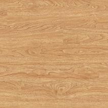 American Oak 2217