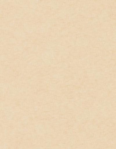 clic-light-beige-uni