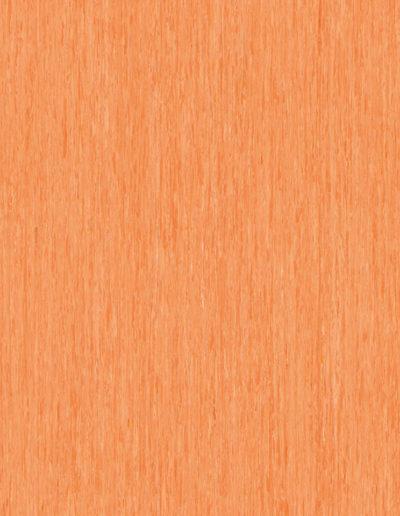 optima-orange-0257