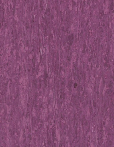 optima-purple-0255