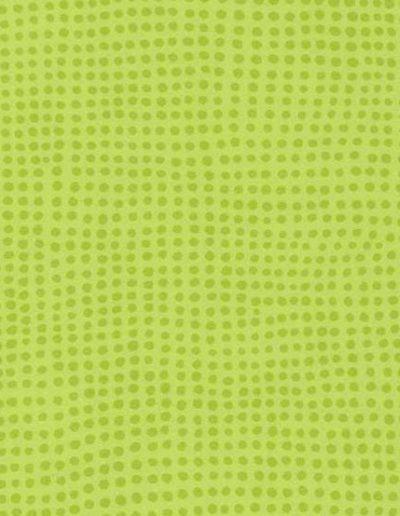 0515 Kiwi