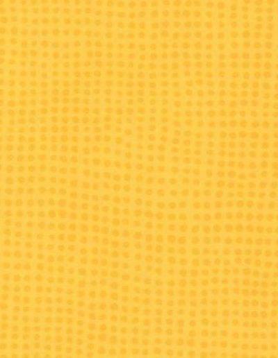 0596 Mimosa