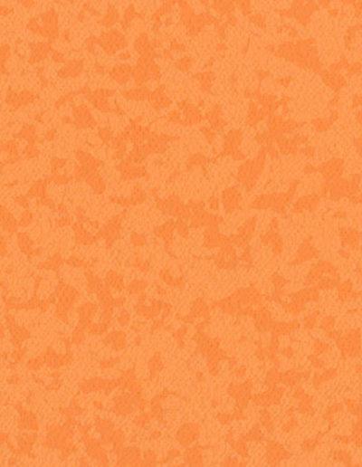 0702 Kumquat