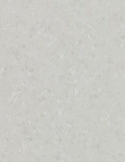 Light Neutral Grey