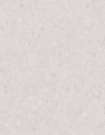 White Neutral Grey