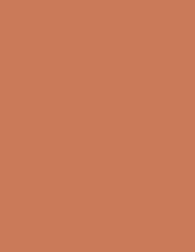 uni-bright-orange
